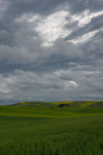 Stormy clouds over fields by Wolfgang Kaehler