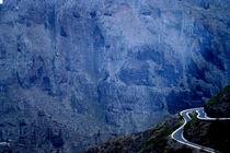 Roadtrip through Teneriffe von Jessy Libik