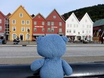 Teddybär in Bergen von Olga Sander