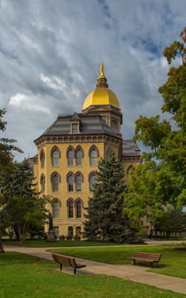 Golden Dome by John Bailey