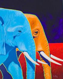 Elephant Walk von Keith Alway