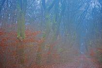 Herbst2014-258