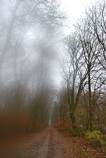 Herbst2014-255