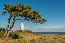Leuchtturm Dornbusch von Thomas Keller
