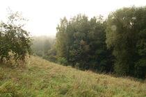 Autumn / Herbst von atari-frosch