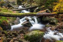 Ilsetal im Harz - Obere Wasserfälle #2 von Pascal Betke