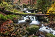 Ilsetal im Harz - Obere Wasserfälle #1 von Pascal Betke