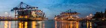 Hamburger Hafen - Burchardkai - Panorma by Pascal Betke
