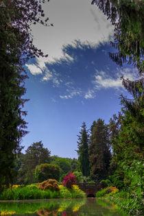 Wenkenpark by emerson