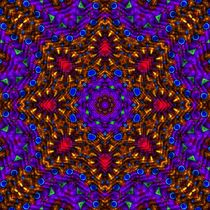 Aster LaVista Mandala by Richard H. Jones