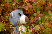 Blaubär und Blaubeere by Olga Sander
