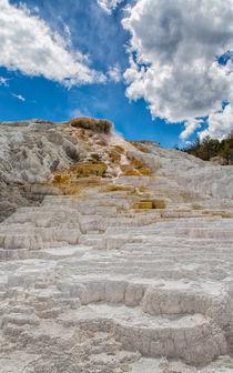 Yellowstone20140621-419-edit