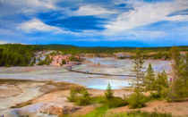 Overlook Of Norris Geyser Basin Yellowstone by John Bailey