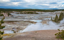 Norris Geyser Basin Yellowstone by John Bailey