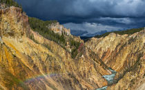 Colors Galore At The Grand Canyon In Yellowstone by John Bailey