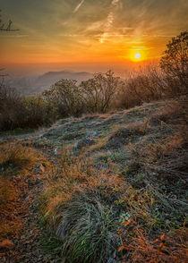 Campiani-sunset-01