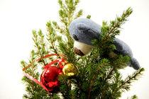 Wenn Teddys Weihnachtskugeln sehen... by Olga Sander