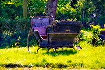 Schlitten im Garten von Christian Behring