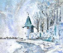 A-seagull-in-lindau-in-winter