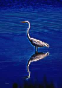 Spirit Of The Egret von John Bailey