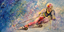 Skiing 08 by Miki de Goodaboom