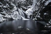 Schwarzwaldwasserfall im Winter von Colin Derks