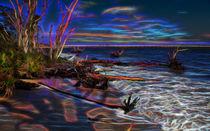 Aurora Borealis Over Florida von John Bailey
