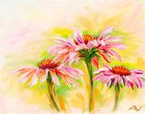 Echinacea, oil painting von valenty
