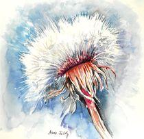 Winter-Pusteblume von Maria Földy