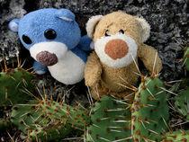 Teddybären und Stachelkakteen by Olga Sander