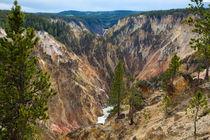 Yellowstone Has A Canyon by John Bailey