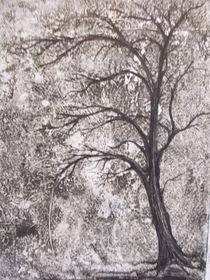 Winterruhe by Dorothy Maurus