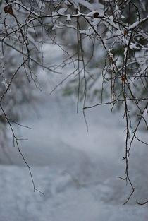 Winter109