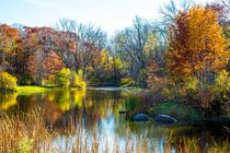 Autumn Colors by Lev Kaytsner