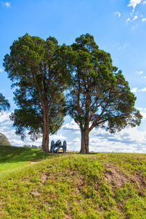Cannon On A Hill von John Bailey