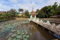 Local temple, Hsipaw, Shan State, Myanmar by kytefoto