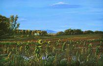 Sonnenblumenfeld von Peter Schmidt