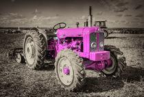 Roadless-4x4-pink