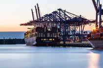Die CMA CGM Marco Polo im Hamburger Hafen von Moritz Wicklein