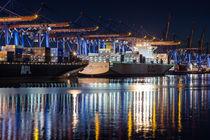 Containerschiffe am Terminal Altenwerder von Moritz Wicklein