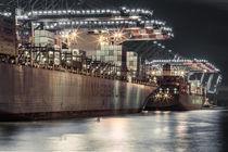 Containerschiffe Waltershof by Moritz Wicklein