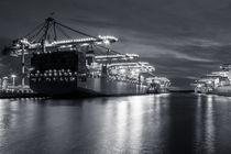 Containerschiffe Waltershof von Moritz Wicklein