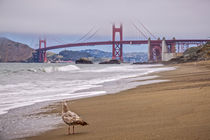 Baker Beach in San Francisco von bildwerfer