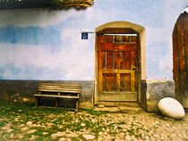 Blue about the gate by Ana Todor