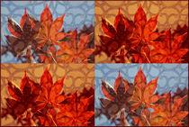 """Viererbild """"Ornamente"""" von lisa-glueck"""