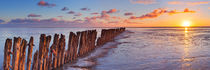 Wooden breakwater at sunrise by Sara Winter
