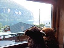 Blick aus dem Fenster by Olga Sander