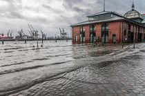 Hochwasser am Fischmarkt XI von elbvue