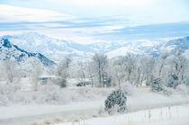 Winterlandschaft in Montana by Marianne Drews