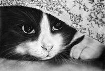 Hide away by Christina Frenken